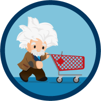 Commerce Cloud Einstein Implementation icon