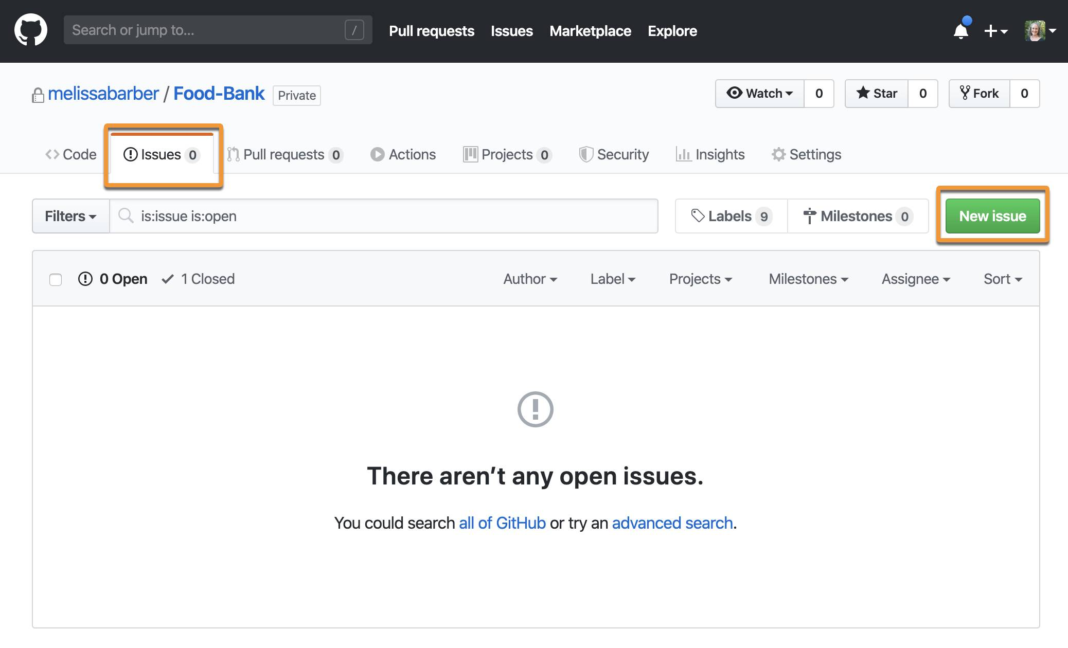 GitHub in a browser window with Issue tab and New Issue button highlighted.