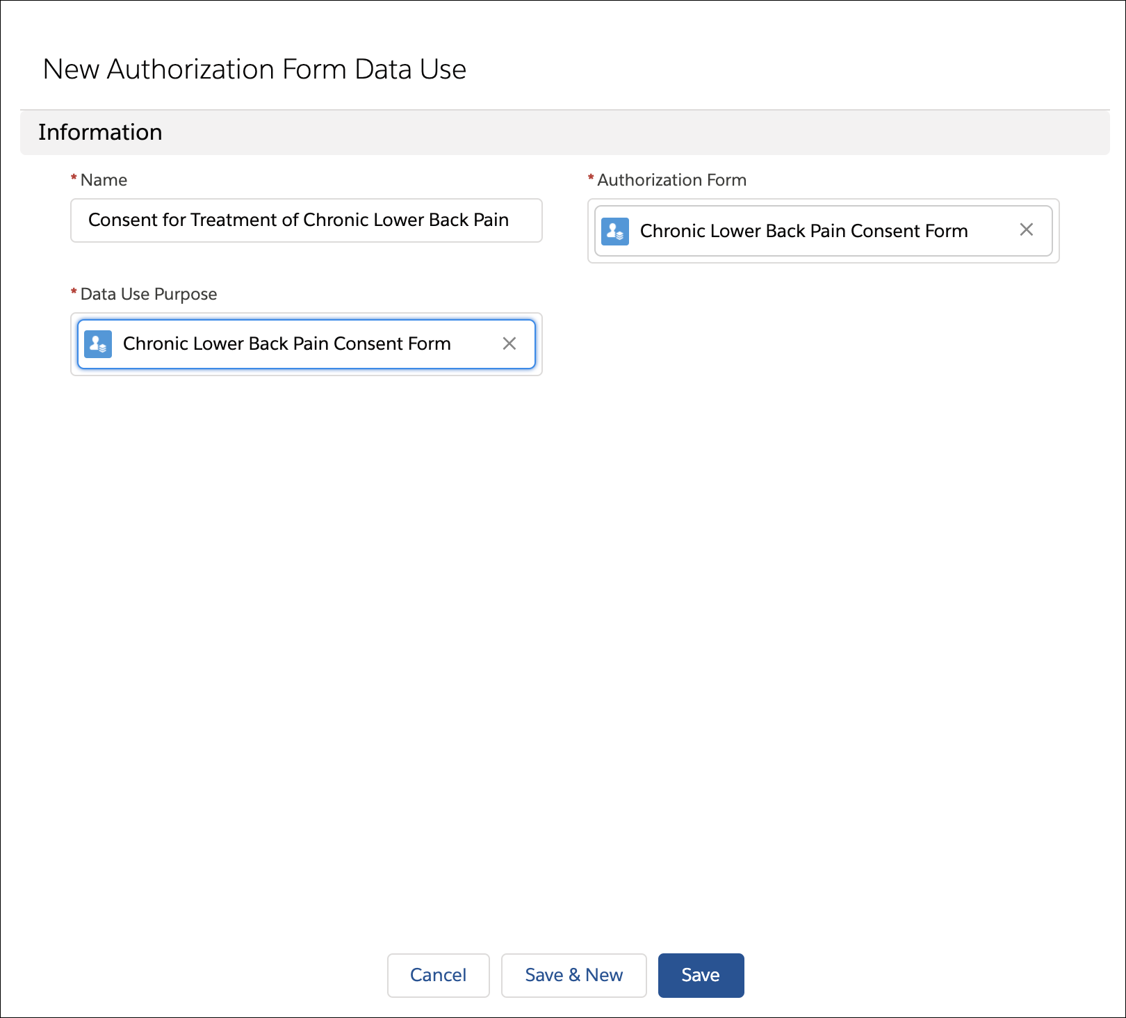 New Authorization Data From Use page where you connect the consent form with the care program.