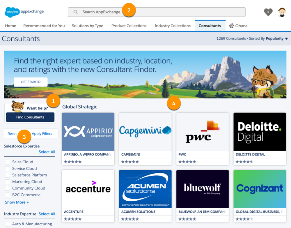 A view of the AppExchange Consultants home page with numbered callouts on the Consultant Finder, search, listing tile area, and filters