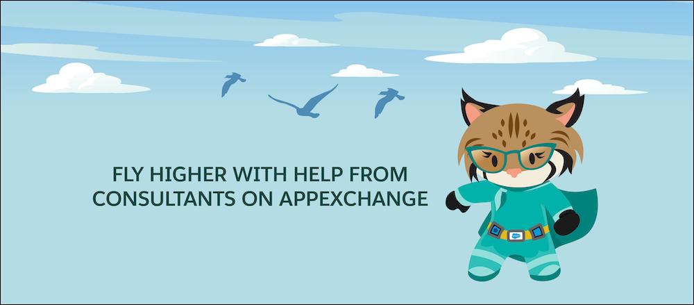 Fly higher with help from consultants on AppExchange