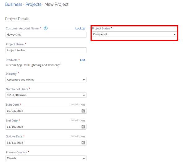 プロジェクトに関する情報を記入してください。これで、Salesforce ではあなたが今まで何を手掛けてきたかを確認できます。