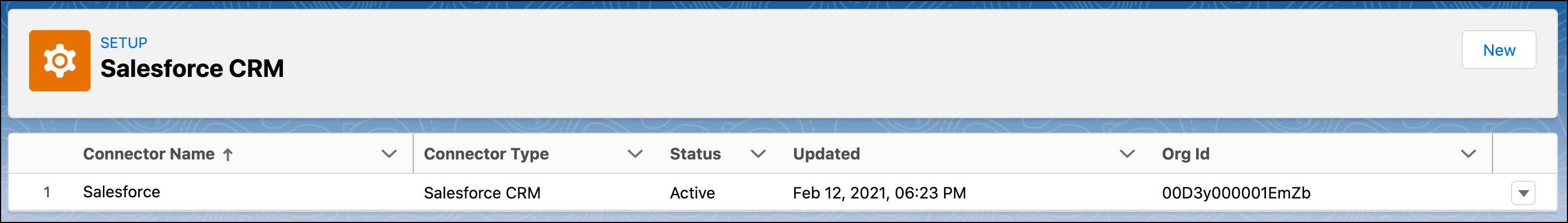 Setup page for Salesforce CRM.