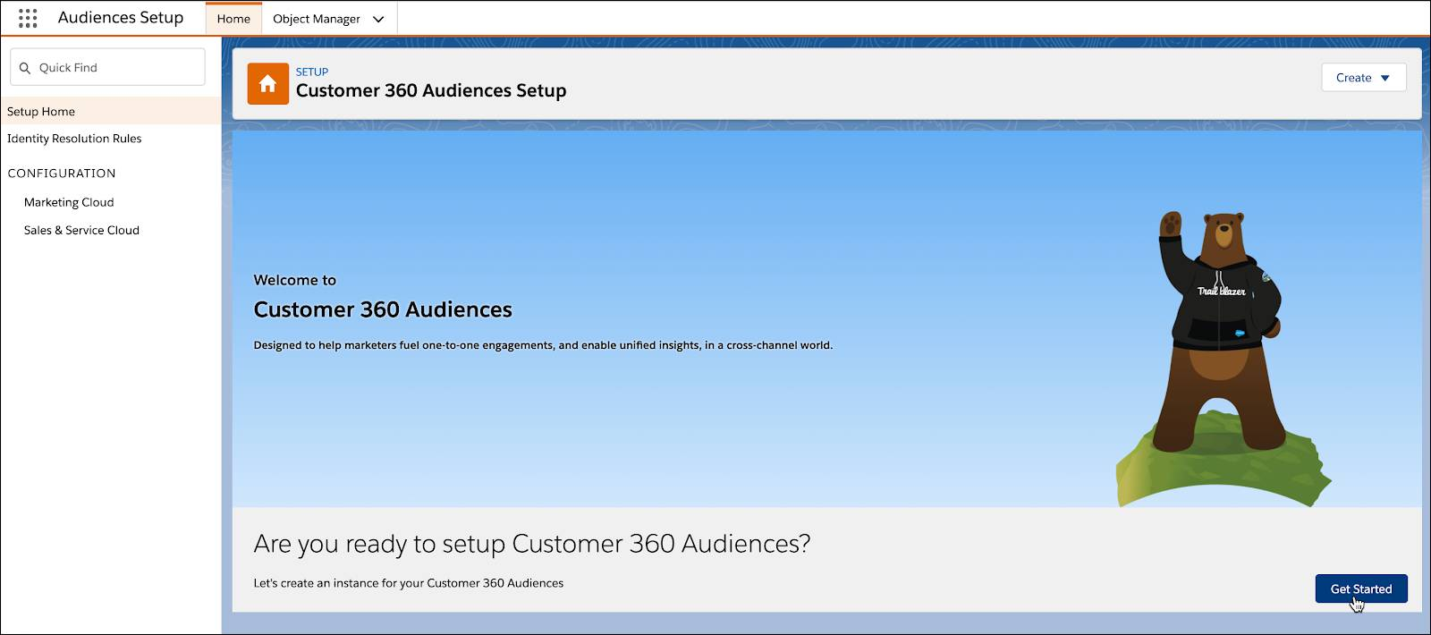Get Started button selected from Audiences Setup page.