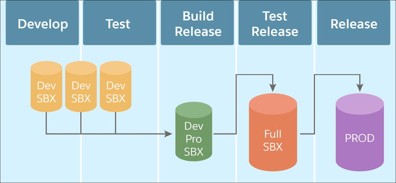 The steps in the application lifecycle: develop and test with deverloper sandboxes; build release with a developer pro sandbox; test release with a full sandbox; and release to production
