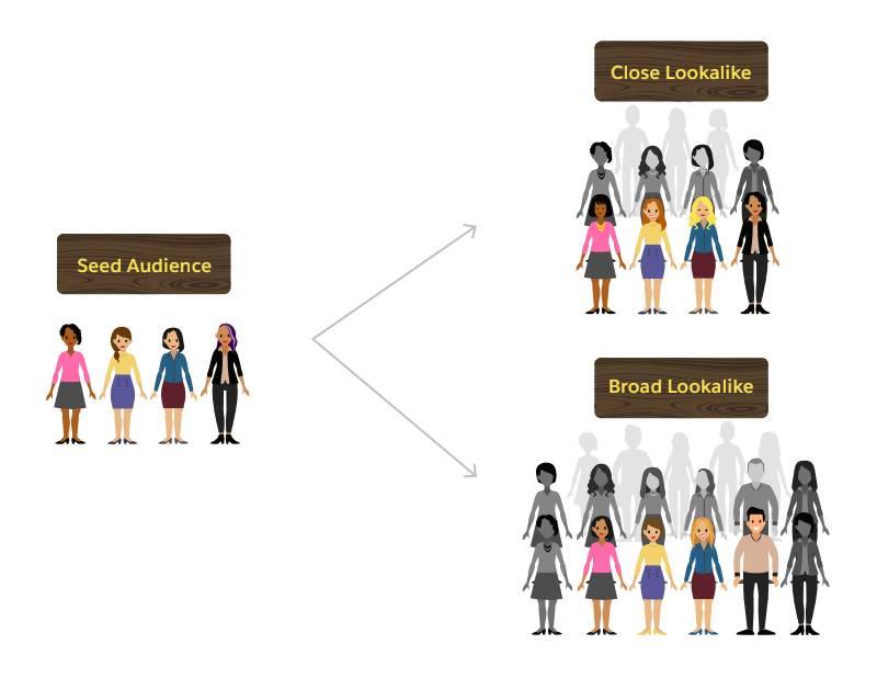 Una audiencia semilla de personas se convierte en dos audiencias parecidas: una audiencia parecida cercana y una audiencia parecida amplia.