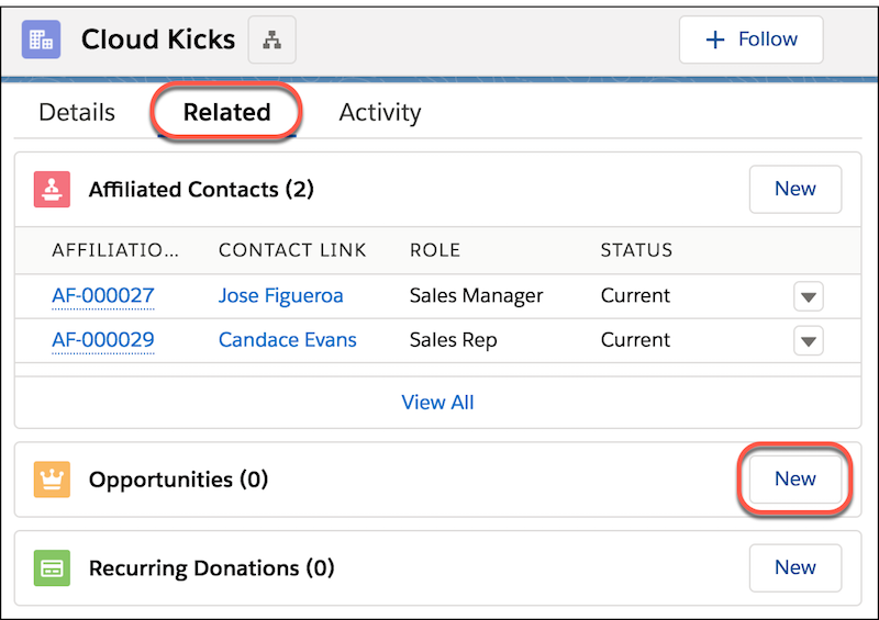 Account Record Related detail, including Opportunities and highlighting New