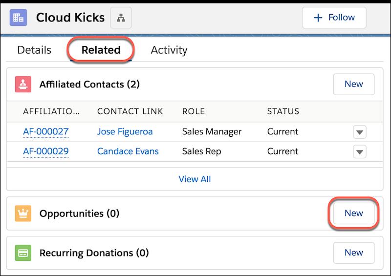 """Details zum Accountdatensatz auf der Registerkarte """"Themen"""" einschließlich Opportunities und markierter Schaltfläche """"Neu"""""""