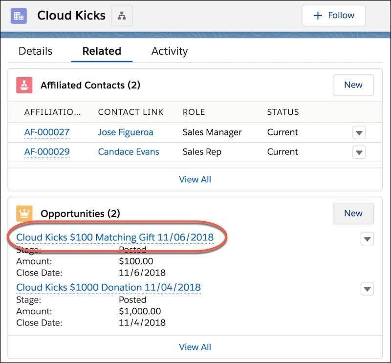 Themenliste 'Opportunity' für den Accountdatensatz