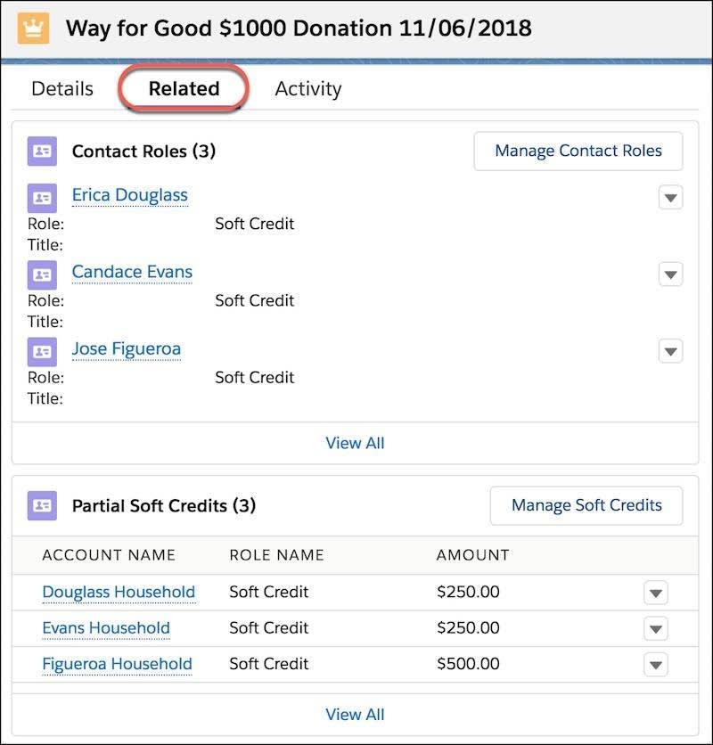 Themenliste 'Teilweise Soft Credits' im Opportunity-Datensatz