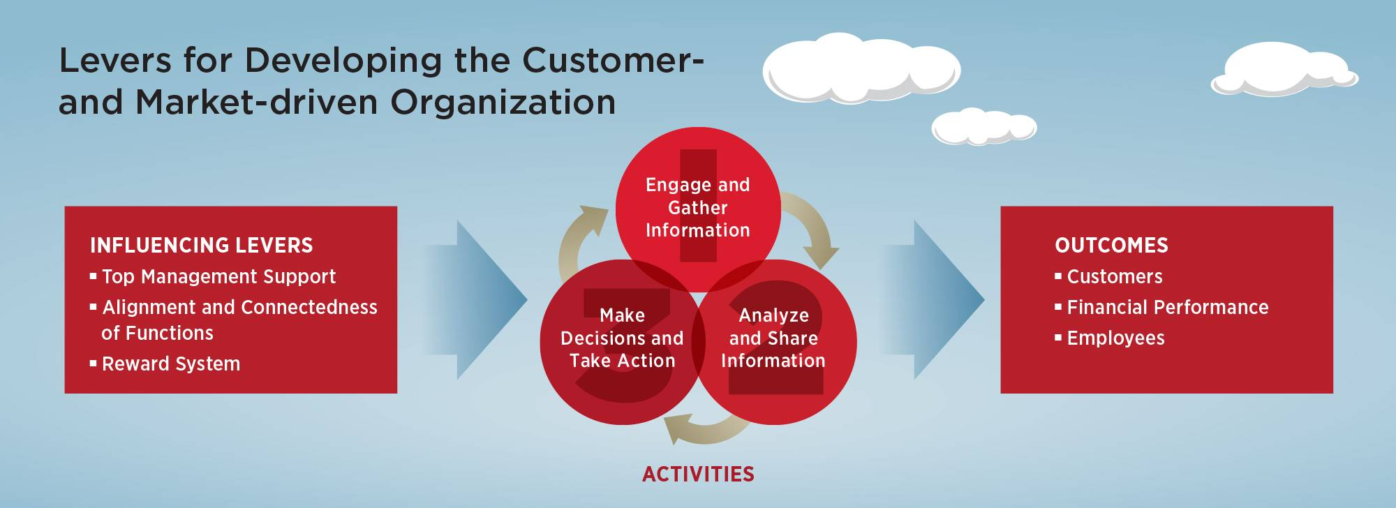 Levers for developing the customer- and market-driven organization