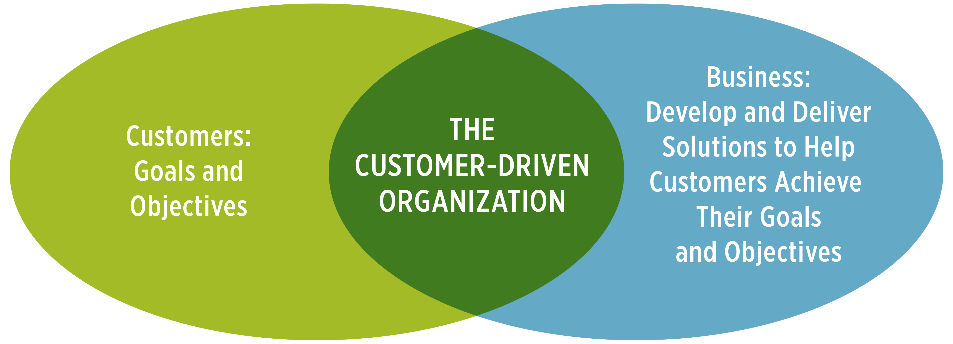 Venn diagram: customers - the customer-drive organization - business