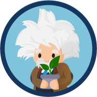 Einstein Account-Based Marketing badge