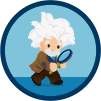 Increased Productivity with Einstein Search icon