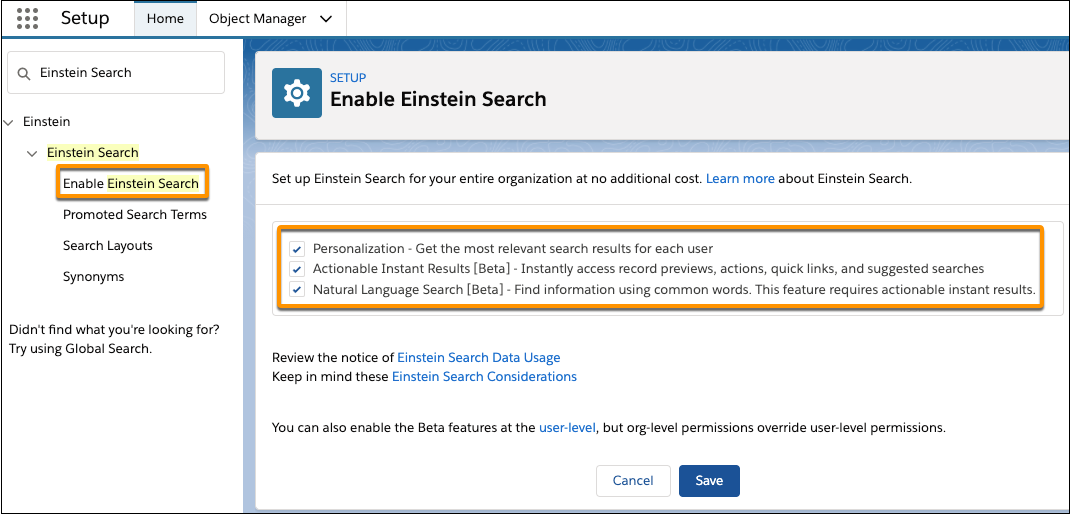 Turn on all Einstein Search features