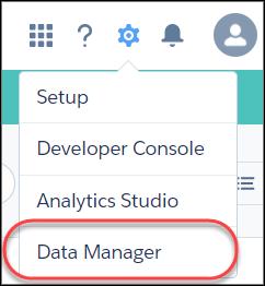 带有数据管理器选项的齿轮图标菜单