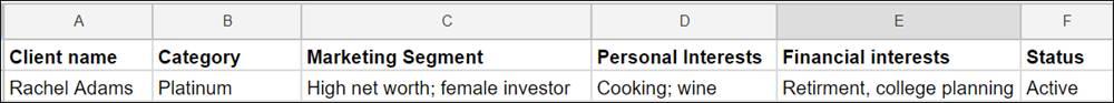 Un tableau de feuille de calcul affichant les colonnes suivantes: Nom du client, Catégorie, Segment marketing, Intérêts personnels, Intérêts financiers, Statut. Un seul enregistrement est affiché: Rachel Adams