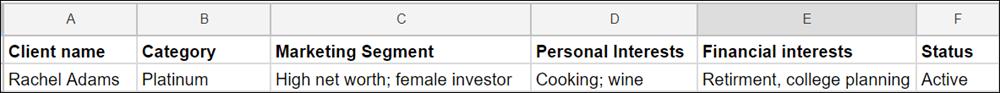 クライアント名、カテゴリ、マーケティングセグメント、個人の関心、投資の関心、状況の各列を示すスプレッドシートテーブル。Rachel Adams という 1 つのレコードのみが表示されています。
