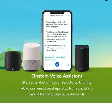 gráfico sobre as ações desempenhadas pelo Einstein Voice Assistant