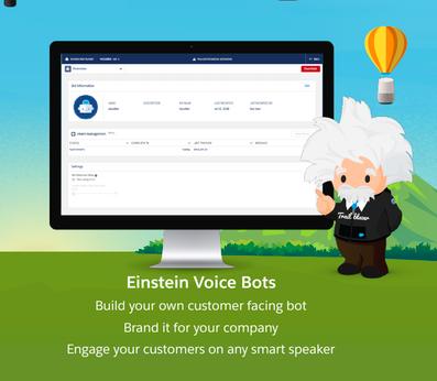 gráfico sobre as ações desempenhadas pelo Einstein Voice Bots