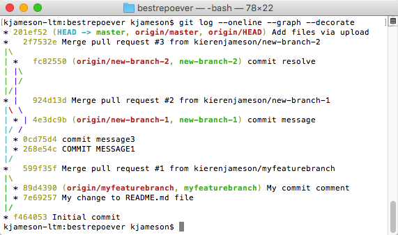 Screenshot showing the output of the `git log --oneline --graph --decorate`  command.