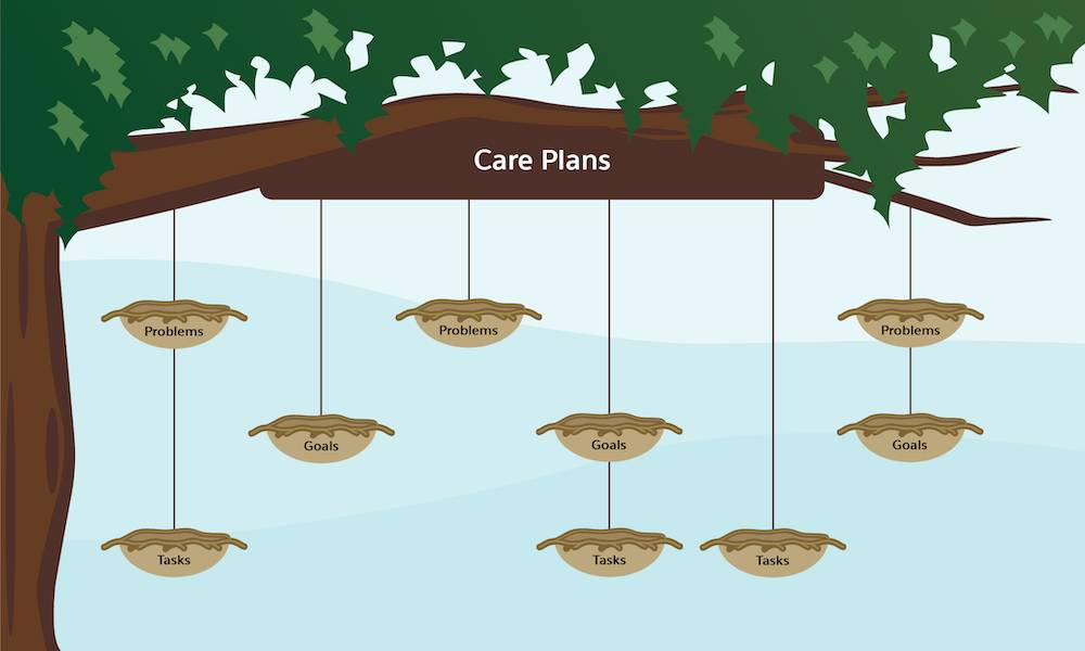 New alternate structures for care plans where tasks and goals can exist independent of problems. Individual nests representing tasks and goals hang from any branch in multiple combinations.