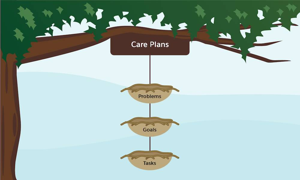 The traditional structure of care plans where tasks roll up to goals and goals roll up to problems is depicted as three nests hanging from a tree branch.