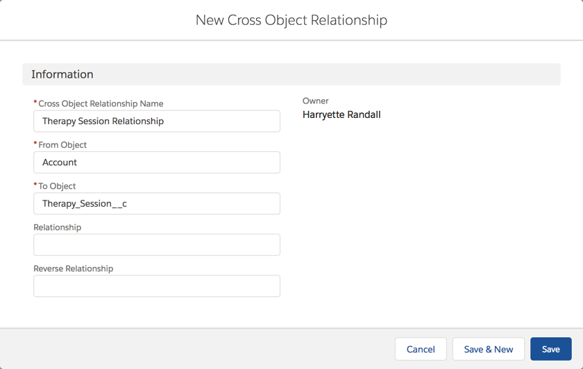 Details entered for the new Therapy Session cross-object relationship