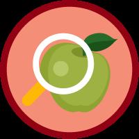 EDA Reports icon