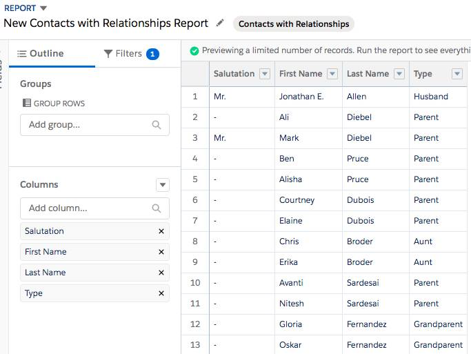 Report preview for New Contacts with Relationships Report.