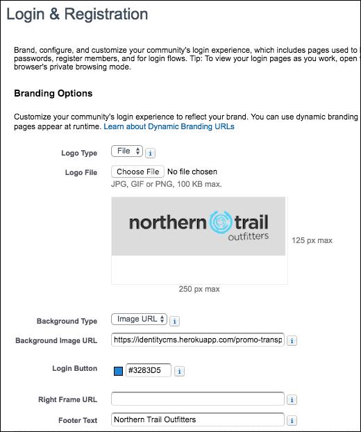Login & Registration branding options screenshot