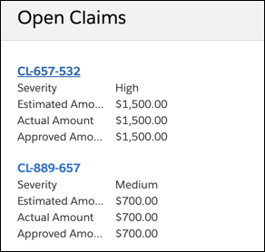 Listing of open claims for Rachel Adams