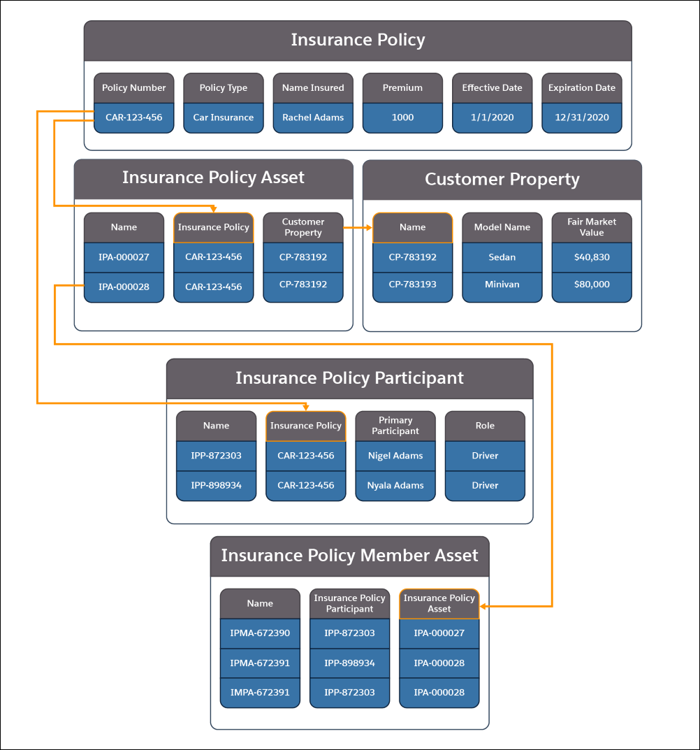 A picture showing the information contained in the Insurance Policy, Insurance Policy Asset, Insurance Policy Participant, and Insurance Policy Member Asset objects and how they relate to each other.