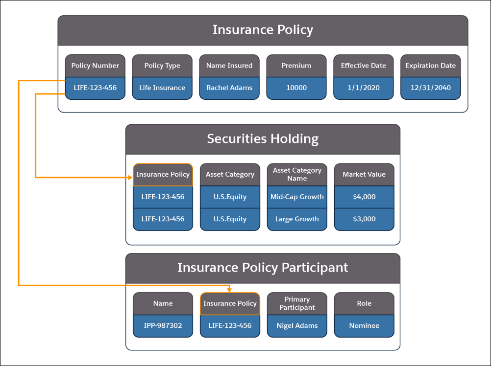 A picture showing the information contained in the Insurance Policy, Securities Holding, and Insurance Policy Participant objects and how they relate to each other.