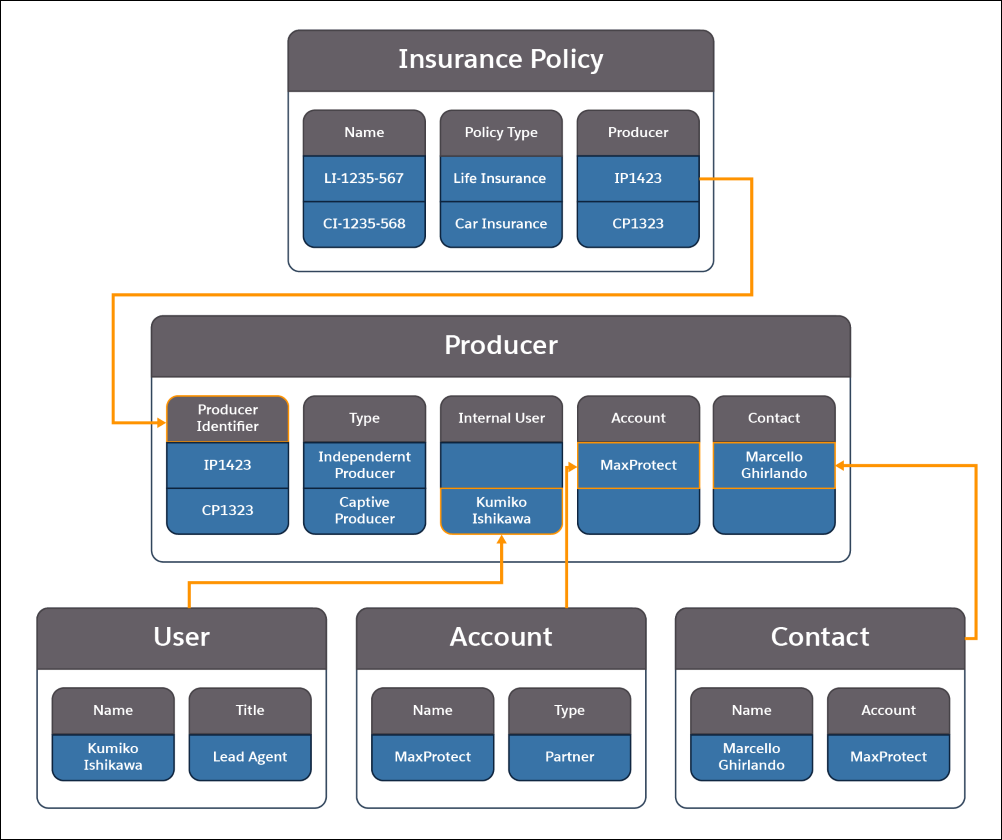 A picture showing the information contained in the Insurance Policy, Producer, Account, Contact, and User objects and how they relate to each other.