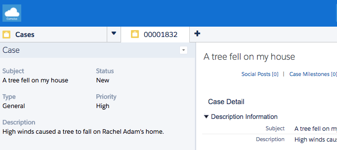 Screenshot showing Rachel's case in Service Cloud Console