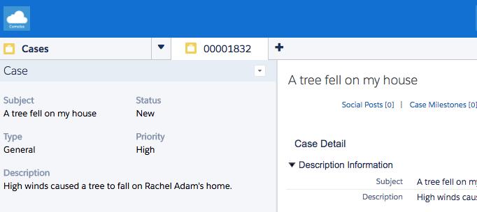 Service Cloud コンソールの Rachel のケースを示すスクリーンショット