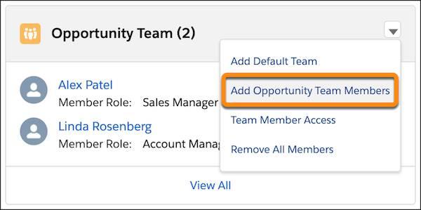 Liste associée Équipe d'opportunité, avec l'action Ajouter des membres à l'équipe d'opportunité mise en évidence