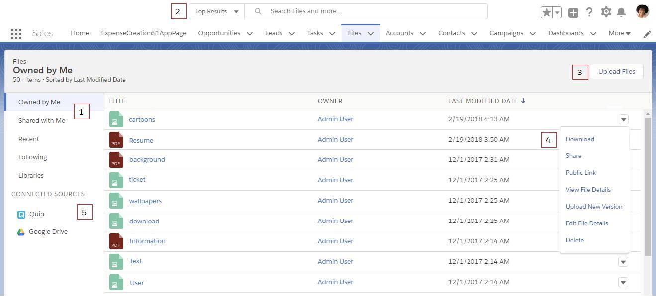 Screenshot der Startseite von Salesforce Files
