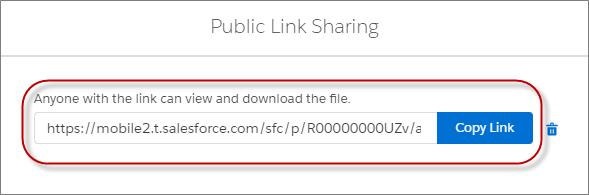 Salesforce Files での公開リンクの共有