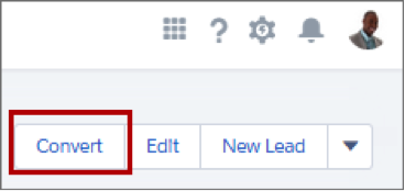 Convert button on a lead