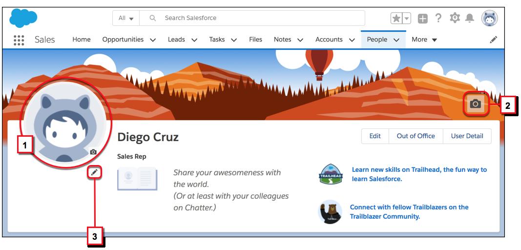 Personalisieren Sie Ihr Profil, indem Sie ein Foto von sich selbst, ein benutzerdefiniertes Banner und einige Details über sich selbst hinzufügen
