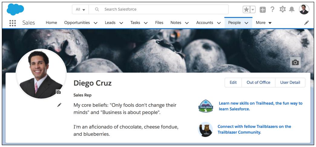 Profilseite, die mit dem Bild des Benutzers, einem benutzerdefinierten Banner und einigen persönlichen Daten personalisiert ist