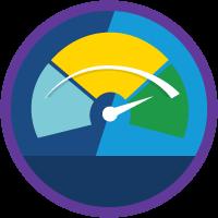 Lightning Experience Performance Optimization icon