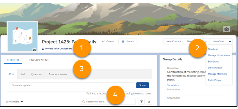 Group page in Lightning Experience