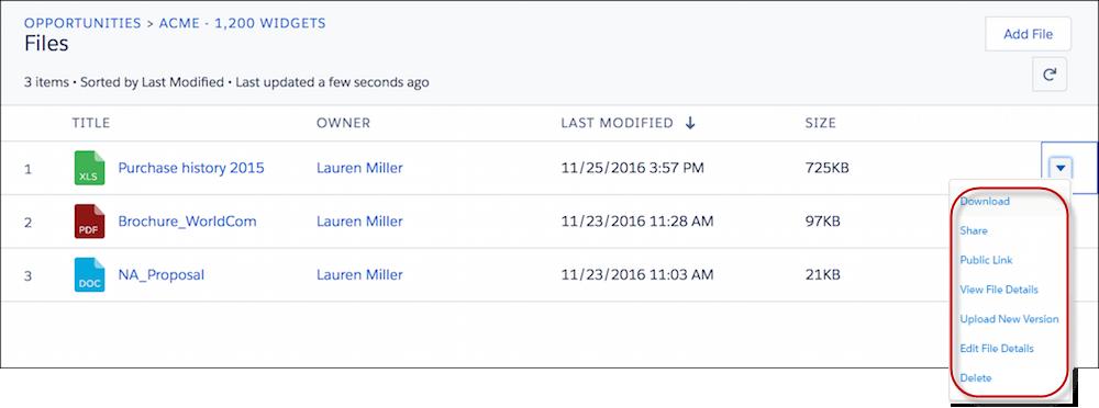 [ファイル] 関連リストでファイルに対して実行できるアクション
