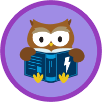 Knowledge Basics for Lightning Experience badge