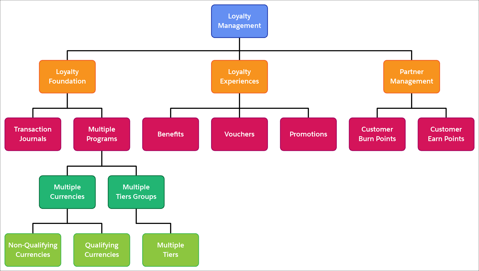 Image showing all the features of Loyalty Management.