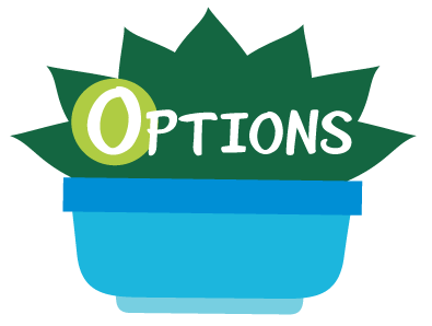 Options: Identify options and make choices.