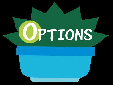 Options (オプション): オプションを特定し、選択する